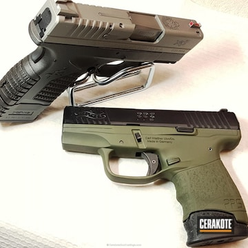 Cerakoted H-146 Graphite Black With H-155 Taurus Stainless And H-236 O.d. Green