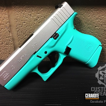 Cerakoted H-168 Zombie Green And H-175 Robin's Egg Blue