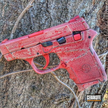 Cerakoted H-216 Smith & Wesson Red And H-199 Desert Sand