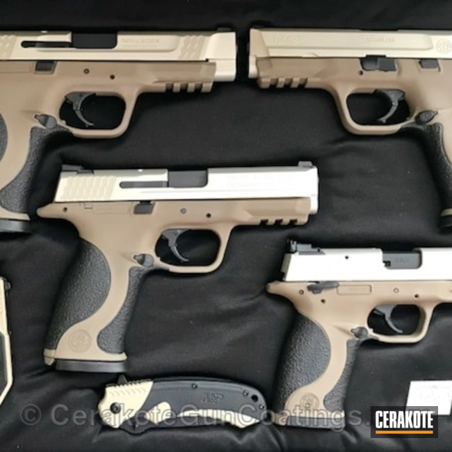 Full Firearm Set in Matching Cerakote H-152 Stainless and H-265 Flat Dark Earth