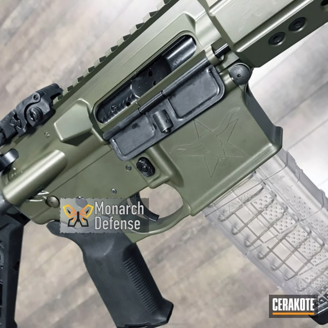 "Thumbnail image for project ""AR-15 done in H-240 Mil Spec O.D. Green"""