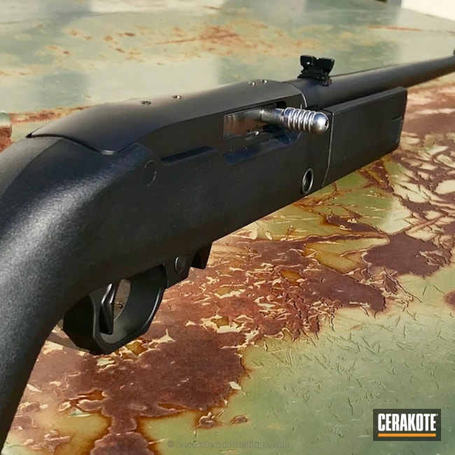 Ruger 10/22 Rifle coated in H-146 Graphite Black