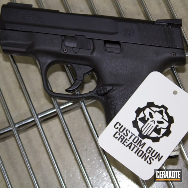 "Thumbnail image for project ""Graphite Black Smith & Wesson Shield"""