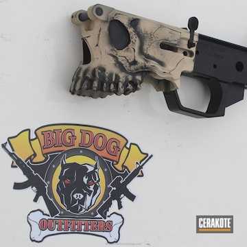 Cerakoted Spike's Tactical Jack Lower Cerakoted In H-146 And H-140