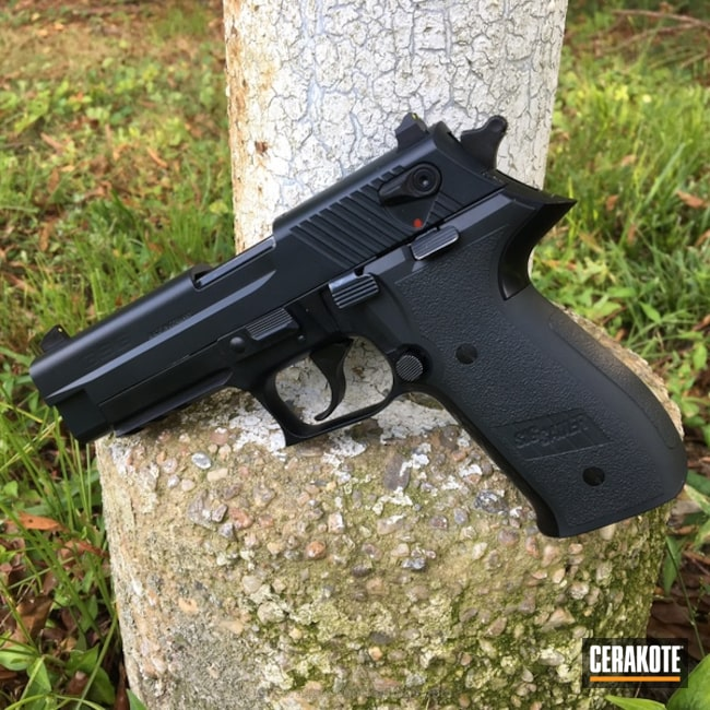 "Thumbnail image for project ""Sig Sauer Handgun coated with E-110 Midnight"""