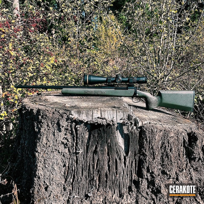 Cerakoted: Custom Rifle,VX-6,Manners,Graphite Black H-146,Splatter,Seekins Rings,EH1,Kreiger Barrel,MAGPUL® O.D. GREEN H-232,Leupold