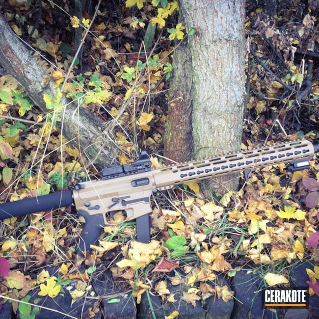 Cerakoted: TROY® COYOTE TAN H-268,Two Tone,Tactical Rifle,AR9