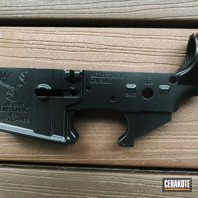 "Thumbnail image for project ""Stag Arms Lower done in H-146 Graphite Black"""