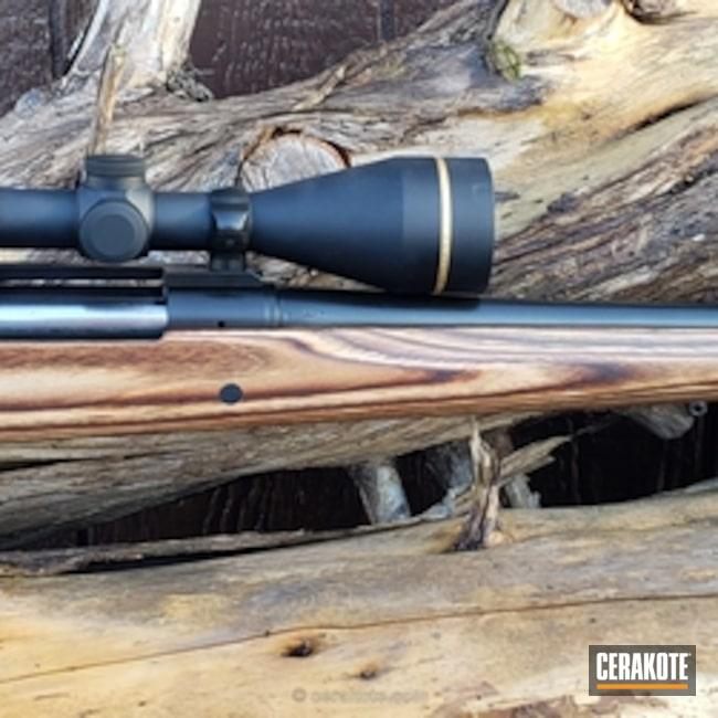 Cerakoted: Bolt Action Rifle,Gloss Black H-109,Remington,Remington 700