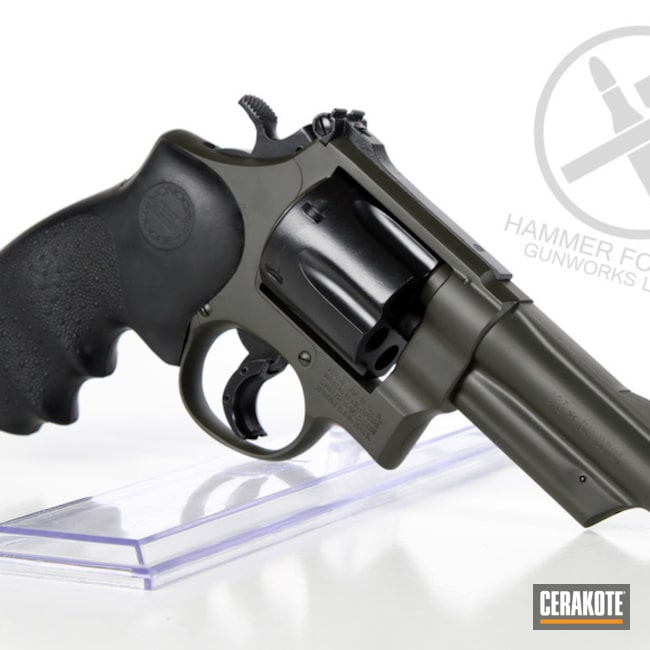 Two Toned S&W Revolver