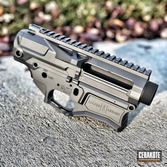 Cerakoted: Upper / Lower,Solid Tone,Titanium H-170,Ascend Armory
