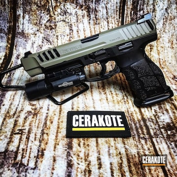 Cerakoted Hkvp9l Handgun With Cerakote Elite E-100 And E-150
