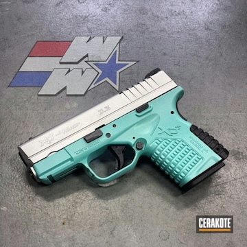 Cerakoted Two Toned Springfield Xds With Cerakote H-151 And H-175