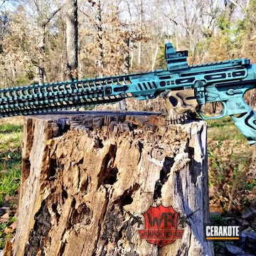 Cerakoted Spike's Tactical Rifle Cerakoted With H-175 And H-146