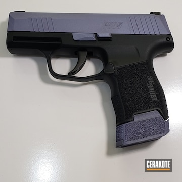 Cerakoted Two Toned Sig Sauer P365 Cerakoted With H-314