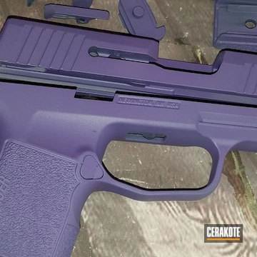 Cerakoted Purple Sig Sauer P365 Parts