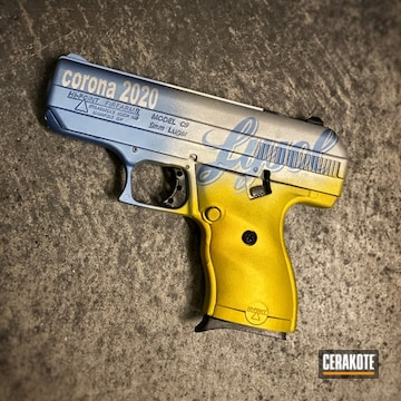 Cerakote Themed Finish Hi-point Model C9