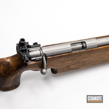 Cerakoted .22lr Bolt Action Rifle In V-119 And H-146