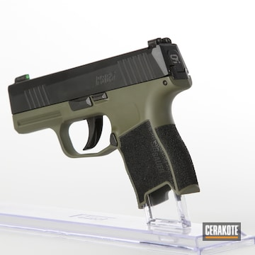 Cerakoted Sig Sauer P365 In H-240 And H-189