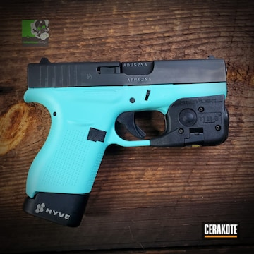 Cerakoted Two Toned Glock 42 In H-175