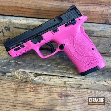 Cerakoted Two Toned Smith & Wesson M&p In H-141