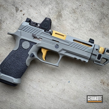 Custom Sig Sauer P320 Cerakoted Using Sniper Grey