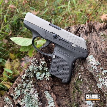 Ruger Lcp Cerakoted Using Shimmer Aluminum And Graphite Black