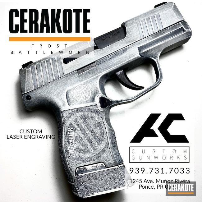 Cerakoted: S.H.O.T,9mm,BLACKOUT E-100,p365,FROST H-312,Sig Sauer,Handgun
