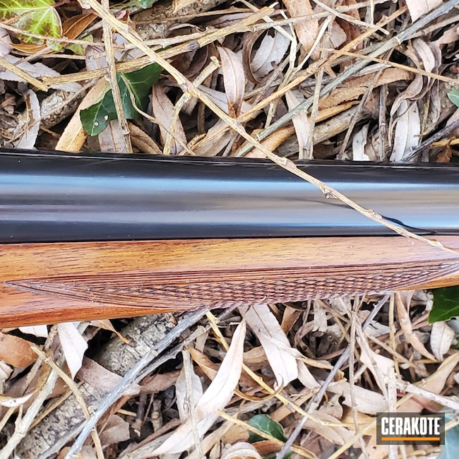 Cerakoted: S.H.O.T,Shotgun,Gloss Black H-109,12 Gauge