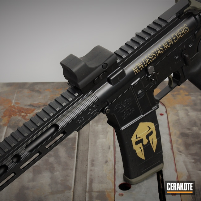 Cerakoted: S.H.O.T,Midnight E-110,AR,Anderson,.223,MOSS E-210,5.56,Gold H-122,AR-15