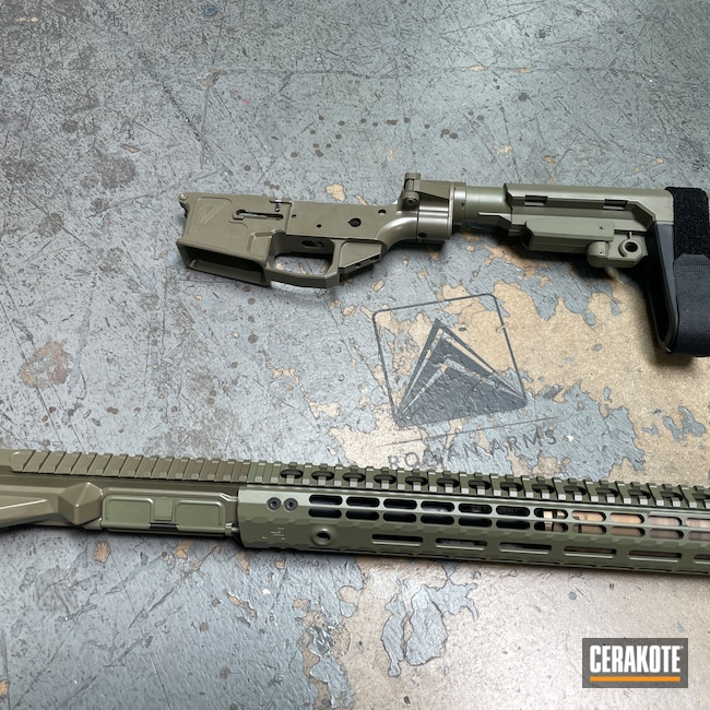 Cerakoted: S.H.O.T,Sand E-150,Upper / Lower / Handguard,.223,5.56,SB Tactical,HAZEL GREEN H-204,AR15 Builders Kit,SBA3,Folding Stock,Modern Sporting Rifle,AR,17 Design,MOSS E-210,Forest Green H-248,Pistol Brace,AR-15