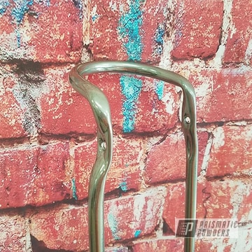 Powder Coated Chrome Bicycle Sissy Bar