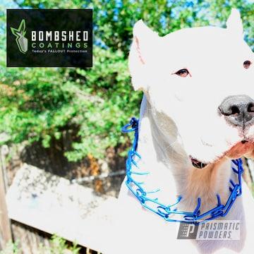 Powder Coated Custom Dog Collars