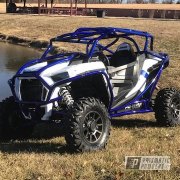 Powder Coated Royal Blue Polaris Rzr Cage