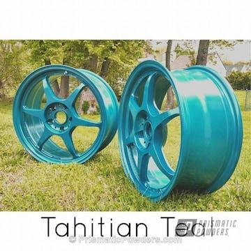 Tahitian Teal