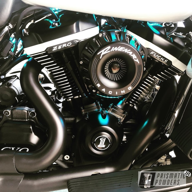 Powder Coating: Harley Davidson,BLACK JACK USS-1522,Arctic White PRS-5390,Accessories,Motorcycles,Custom Motorcycle Accents
