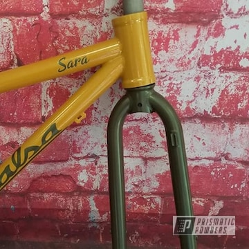 Powder Coated Bicycle Frame And Fork In Pmb-6881 And Pmb-6350